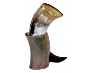 Viking Drinking Horn Mug...